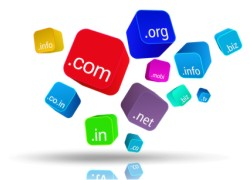 website domain registration
